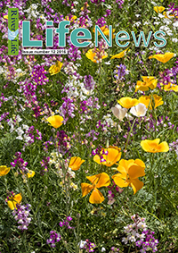 Life News Cover 2016 200px